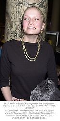 LADY MARY WELLESLEY daughter of the Marquess of Douro, at an exhibition in London on 19th March 2002.OYK 107