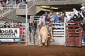 Bulls 1st Section