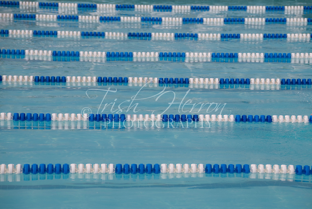Lane lines divide a competition swimming pool.