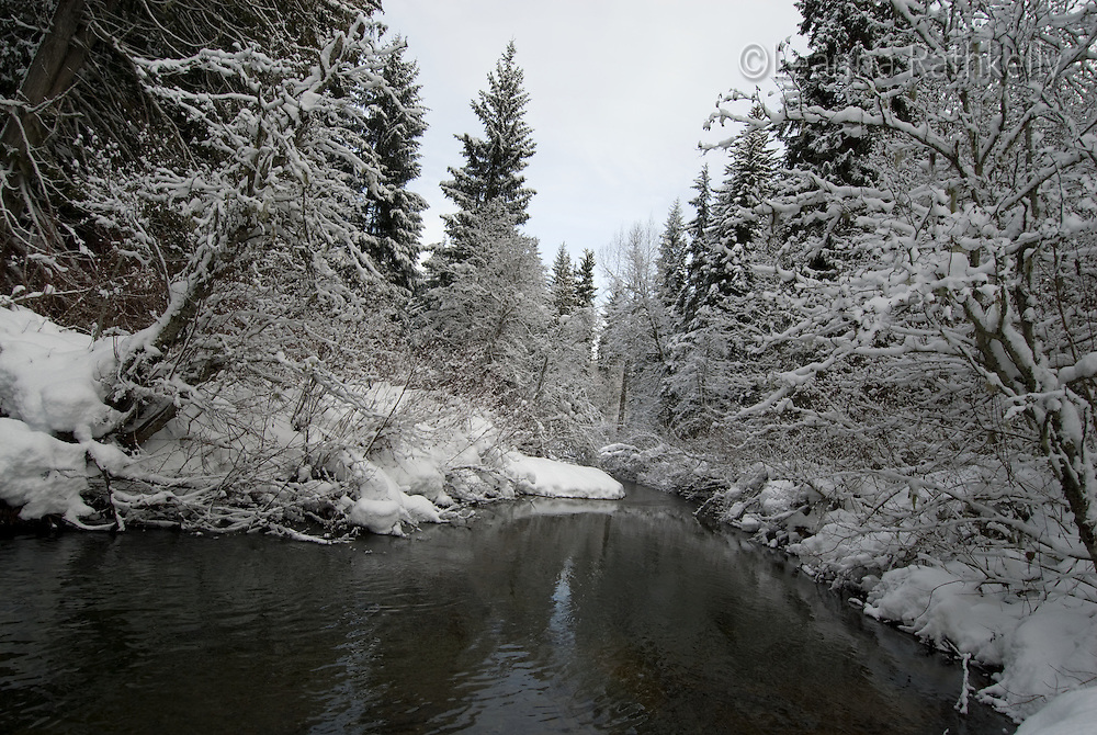 River of Golden Dreams on a snowy winter day, Whistler, BC