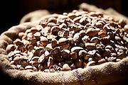 Betel nuts (Areca Nut) on sale at Khari Baoli spice and dried foods market, Old Delhi, India