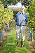 Will Gissane in the vineyard at his Herefordshire home<br /> CREDIT: Vanessa Berberian for The Wall Street Journal<br /> HOBBY-Gissane/UK