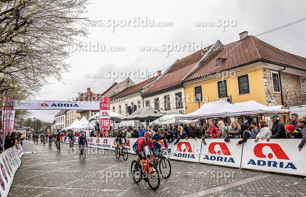 Peloton during the cycling race 5th Grand Prix Adria Mobil, on April 7, 2019, in Novo mesto, Slovenia. Photo by Vid Ponikvar / Sportida