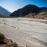 Climbing the Kali Gandaki riverbed from Jomsom during the Yeti Tribe gathering, Nepal.