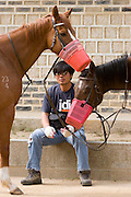 Korean Folk Village. TV movie set. Feeding the horses.