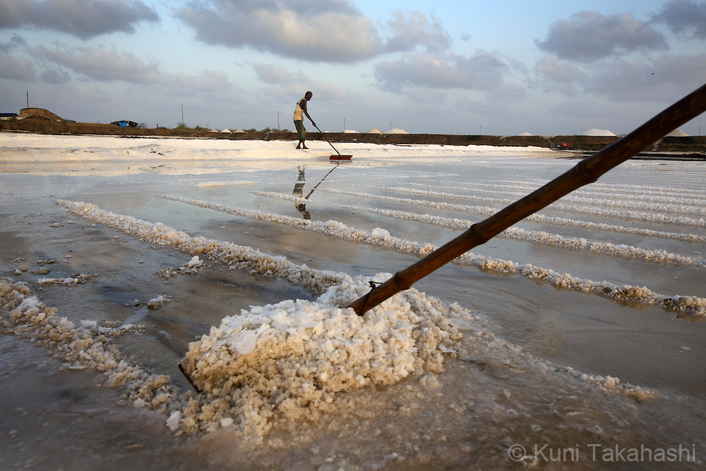 Workers rake salt at sea salt pan in Saphale, about 100km north of Mumbai, India on May 12, 2013. <br /> (Photo by Kuni Takahashi)