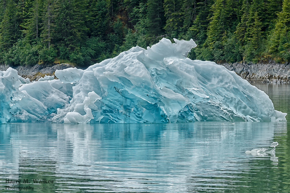 Iceberg from Dawes Glacier; Endicott Arm in Tracy Arm-Fords Terror Wilderness; Southeast Alaska south of Juneau