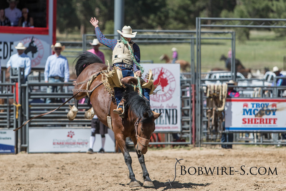 Saddle bronc rider Lane Schuelke rides Summit Pro Rodeo's 872 Big Hole in the first performance of the Elizabeth Stampede on Saturday, June 2, 2018.
