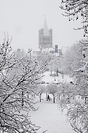 view from the Rhinegarden to the romanesque church Gross St. Martin, snow, winter, Cologne, Germany.<br /> <br /> Blick vom Rheingarten zur Kirche Gross St. Martin, Schnee, Winter, Koeln, Deutschland