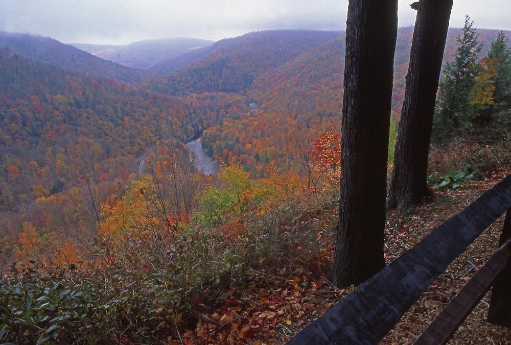 World's End State Park, PA. autumn, Loyalsock Creek