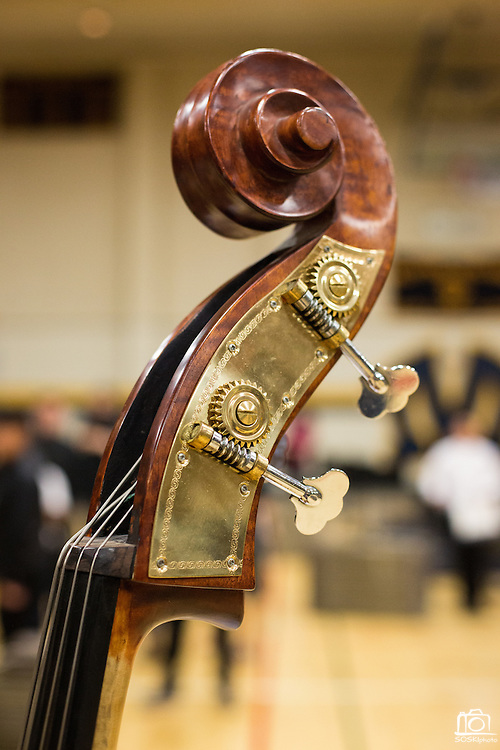 A detail of a double bass' neck during the Milpitas Unified School District's Tenth Annual Music Festival at Milpitas High School in Milpitas, California, on April 4, 2013. (Stan Olszewski/SOSKIphoto)