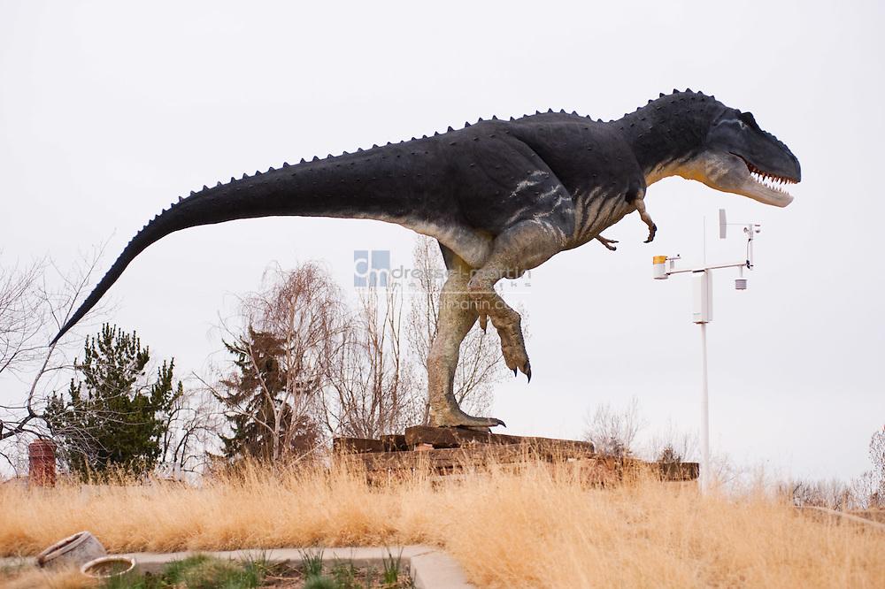 Jurassic Gardens Installation. April 14, 2009