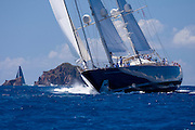 Zenji sailing in the St. Barth's Bucket Regatta.