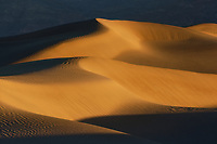 Warm light on Mesquite Dunes, Death Valley National Park, California, USA