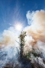 Prairie Fire (Clymer)