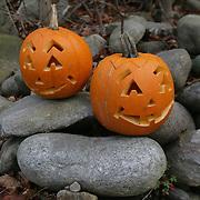 Trollh&auml;ttan 20101025 <br /> Halloween pumpa<br /> pumpor p&aring; stenar<br /> <br /> <br /> FOTO : JOACHIM NYWALL KOD 0708840825_1<br /> COPYRIGHT JOACHIM NYWALL<br /> <br /> ***BETALBILD***<br /> Redovisas till <br /> NYWALL MEDIA AB<br /> Strandgatan 30<br /> 461 31 Trollh&auml;ttan<br /> Prislista enl BLF , om inget annat avtalas.