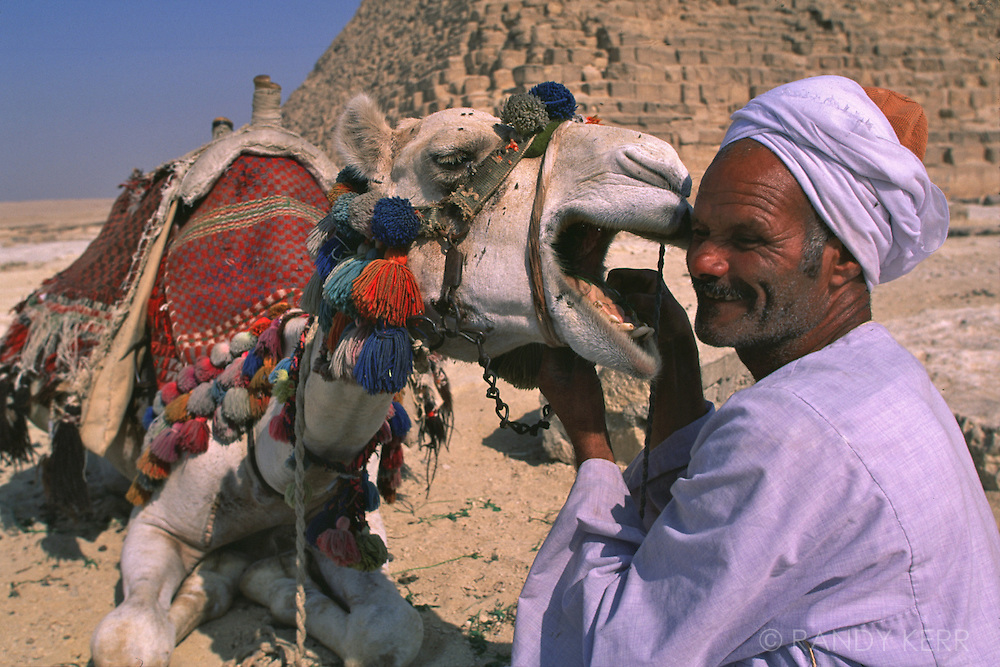 A man very fond of his camel