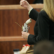 District Attorney, Wendy Baker shows gun to the jury and defendent Howard Dale Bellamy, 24, who is on trial for the shooting death of 28-year-old Hindu community activist Akhil Chopra. Bellamy took the witness stand Friday morning. Friday, June 20, 2008, in Houston. ( Leonardo Carrizo / Chronicle )