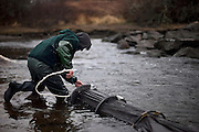 John Taylor tends to his nets that are set up for catching elvers in Pemaquid, Maine on Thursday, March 29, 2012.  Craig Dilger for The New York Times