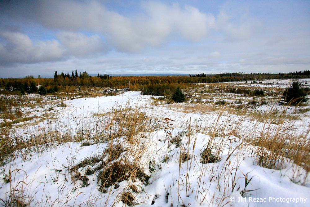 CANADA ALBERTA SLAVE LAKE 10OCT09 - Land cleared of boreal forest east of Peace River in northern Alberta, Canada...Significant deposits of Bitumen, also known as tarsands have been found in the area around Peace River and Slave Lake, thus threatening the continued existence of flora and fauna of the Boreal through oil and gas developments...The Canadian boreal region represents a tract of land over 1,000 kilometres wide separating the tundra in the north and temperate rain forest and deciduous woodlands that predominate in the most southerly and westerly parts of Canada. ..The boreal region contains about 14% of Canada's population. With its sheer vastness and integrity, the boreal makes an important contribution to the rural and aboriginal economies of Canada, primarily through resource industries, recreation, hunting, fishing and eco-tourism...Photo by Jiri Rezac / GREENPEACE