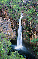 Australia Queensland Waterfall in rainforest