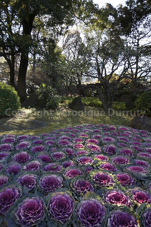 Hibiya Park in Chiyoda City, Tokyo, Japan. // Le parc Hibiya, jardin public situé dans l'arrondissement de Chiyoda à Tokyo au Japon.