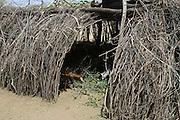 Africa, Ethiopia, Omo Valley, Karo tribe hut