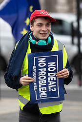 © Licensed to London News Pictures. 15/01/2019. London, UK. Pro-Brexit demonstrator Max Hammet Millay demonstrates as pro-Brexit and anti-Brexit demonstrators protest alongside each other outside the Houses of Parliament, Westminster. This evening, MPs are due to vote on British Prime Minister Theresa May's EU withdrawal deal, after the previous vote in December was postponed. Photo credit : Tom Nicholson/LNP