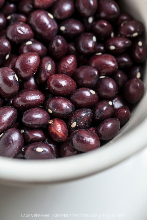 Dried heirloom 'True Red Cranberry' beans