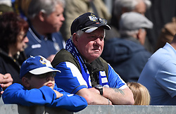 Spectator at the Sky Bet League Two match between Bristol Rovers and Exeter City at The Memorial Stadium on 23 April 2016 in Bristol, England - Mandatory by-line: Paul Knight/JMP - 23/04/2016 - FOOTBALL - Memorial Stadium - Bristol, England - Bristol Rovers v Exeter City - Sky Bet League Two