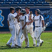 Caravel Academy players celebrate defeating Middletown in a DIAA baseball semifinal game Frawley Stadium Saturday May 28, 2016 in Wilmington.