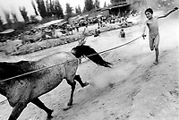 Xinjiiang Uygur Autonomous region. Kashgar. A Uygur boy tries to regain control of his horse by the river in the Sunday Market 2000.