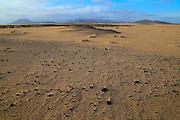Sand dunes at Las Dunas natural park, Corralejo, Fuerteventura, Canary Islands, Spain