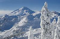 Mount Baker, 10,781 ft (3,286 m) in winter seen from Kulshan Ridge, North Cascades Washington