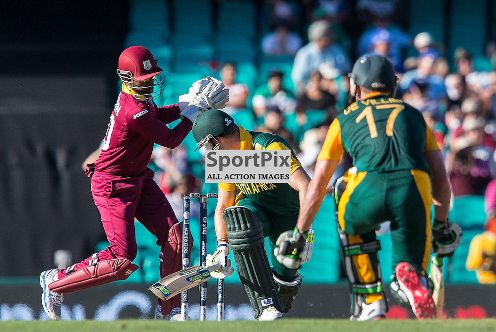 ICC Cricket World Cup 2015 Tournament Match, South Africa v West Indies, Sydney Cricket Ground; 27th February 2015<br /> South Africa&rsquo;s David Miller looks back as West Indies Denesh Ramdin attempts a stumping