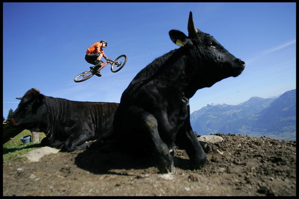 Rider: Ben Walker.Location: Chindone