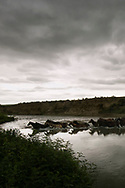 Crow Indian horse herd, Little Bighorn River, Crow Indian Reservation, Montana, storm
