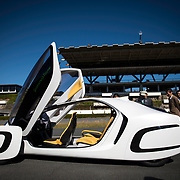 Japan's Plastic Car