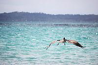 Bocas del Toro es una provincia de Panam&aacute;. Su capital es la ciudad de Bocas del Toro.<br /> Las Islas del Archipi&eacute;lago de esta provincia son uno de los &uacute;ltimos para&iacute;sos naturales y culturales de Latinoam&eacute;rica. Bocas del Toro es aun un destino bastante virgen e inexplorado, conservando sus tesoros culturales y naturales. Panam&aacute;, 3 de octubre de 2012. (Edgar Miranda/Istmophoto)
