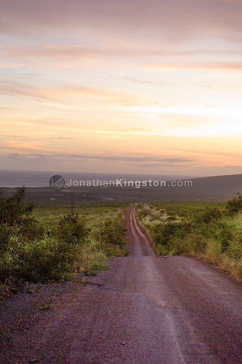 MOLOKAI, HI - A view of an unpaved road at sunset leading to the ocean on Molokai, Hawaii.