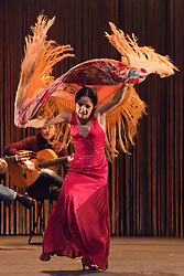 "© Licensed to London News Pictures. 10/02/2012. London, England. Olga Pericet performing in her new solo show ""Rosa, Metal y Ceniza (Rose, Metal and Ash)"" at Sadler's Wells Theatre during the Flamenco Festival London 2012. Photo credit: Bettina Strenske/LNP"