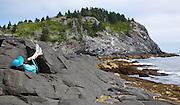 Courtney Blitch asleep on the rocks; Vacation trip to Monhegan Island