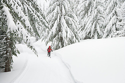 A lone ski patroller skis during a light snowfall along a grommed trail on the Mount Tahoma Trails near Mount Rainier in the Washington state Cascade Mountain Range.