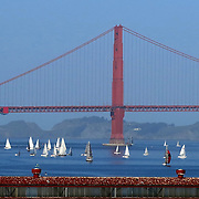Sailboats float around the Golden Gate bridge in San Francisco, California on March 3, 2014. (AP Photo/Alex Menendez)
