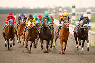 Thoroughbred horse racing, Keneland, Lexington, Kentucky