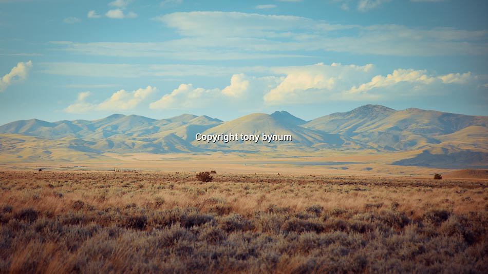 hills and short grass prairie of eastern and central montana conservation photography - montana wild prairie