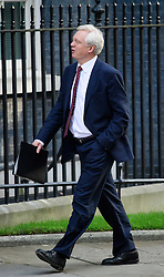 © Licensed to London News Pictures. 13/09/2016. London, UK.  Secretary of State for Exiting the European Union DAVID DAVIS MP arrives at 10 Downing Street in London for cabinet meeting on September 13, 2016. Photo credit: Ben Cawthra/LNP
