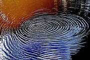 circular ripples in water
