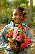 Smiling girl age 9 holding bouquet of autumn zinnia flowers.  St Paul  Minnesota USA