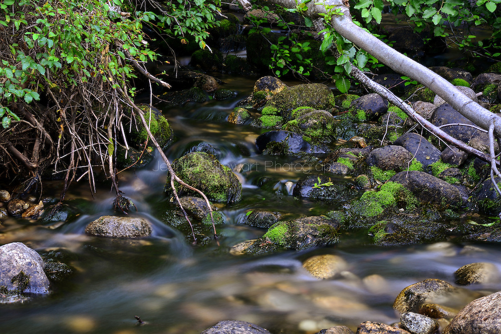 MONTANA - JULY 28: View of a wild mountain stream. (Photo by Jennifer Stewart)